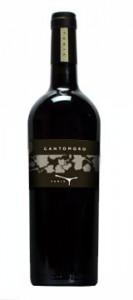 100% Cabernet Sauvignon: Cantomoro è a pieno titolo tra i  vini pregiati italiani